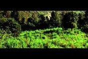 Cold Mountain - Trailer